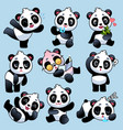 panda cute asian bears in different poses vector image vector image