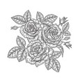 rose flowers and leaves in vintage style hand vector image vector image