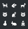 set animals and pets icons vector image