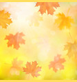 autumn background with blurred maple fallen leaves vector image vector image