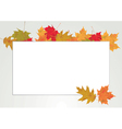 Autumn Leaves Copyspace vector image