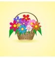 basket with beautiful flowers vector image vector image