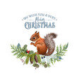 christmas banner with branches and squirrel vector image