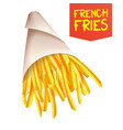french fries potatoes ast food icons vector image