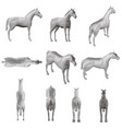 set with a polygonal horse in different positions vector image vector image