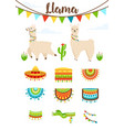 cute alpaca and llama with saddlery sombrero hat vector image vector image
