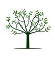 green tree and leafs vector image vector image