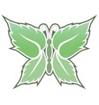 mint butterfly vector image vector image
