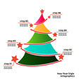 New yearChristmas info graphics vector image