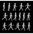 phases step movements man in walking sequence vector image