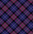 Pride of scotland tartan fabric diagonal texture vector image vector image
