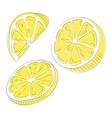 set lemons collection slices lemon vector image vector image