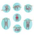 sloth vector image vector image