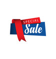 special sale ribbon template design vector image vector image