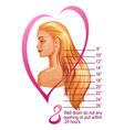 womans hairstyle and scale of hair extensions vector image