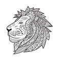 hand drawn lion isolated on white background vector image