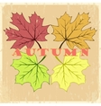 autumn hand drawn leaves vector image vector image