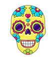 day dead sugar skull with floral ornament vector image