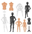 Dummy mannequin model vector image