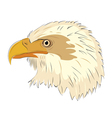 eagle head isolated on white background vector image