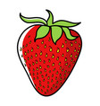 graphic of strawberry vector image vector image