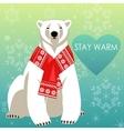 Greeting Card with Polar bear vector image vector image
