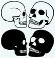 Human skull vector image