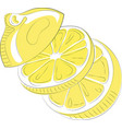 logo lemon in form heart stylized slice vector image vector image