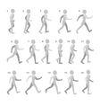 Phases of Step Movements Man in Walking Sequence vector image vector image