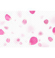 pink flower petals are falling vector image