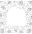aster daisy flower outline border vector image