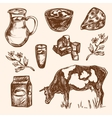 Dairy products hand drawn decorative icons set vector image