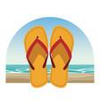 flips flops icon vector image