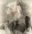 gray beige polygonal triangular pattern background vector image vector image