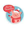 merry christmas flat icon with funny pig santa vector image vector image