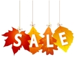 sale autumn vector image