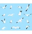set of beautiful seagulls vector image vector image