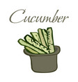 tasty veggies cucumber vector image