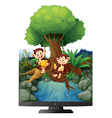 Two monkeys eating banana by the river vector image vector image