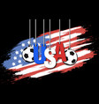 banner the inscription usa vector image