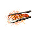 gunkan sushi with shrimp from a splash of vector image vector image