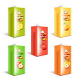 juice box packaging 3d realistic set vector image vector image