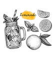 lemonade and ingredients vector image vector image