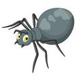 black spider cartoon vector image vector image
