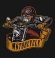 bulldog biker colorful vintage emblem vector image vector image