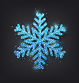 glitter covered blue snowflake with on transparent vector image vector image