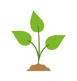 green plant icon image vector image vector image