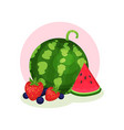 organic summer products ripe watermelon vector image