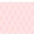 Soft Pink Seamless Pattern vector image
