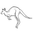 hand draw kangaroostyle sketch tattoo vector image